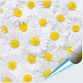 Fliesenaufkleber Motiv Margeritenblüte 15x15 cm 001