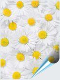 Fliesenaufkleber Motiv Margeritenblüte 15x20 cm 001