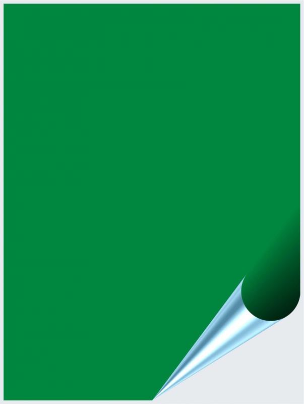 Fliesenaufkleber Hellgrün matt 15x20 cm – Bild 1
