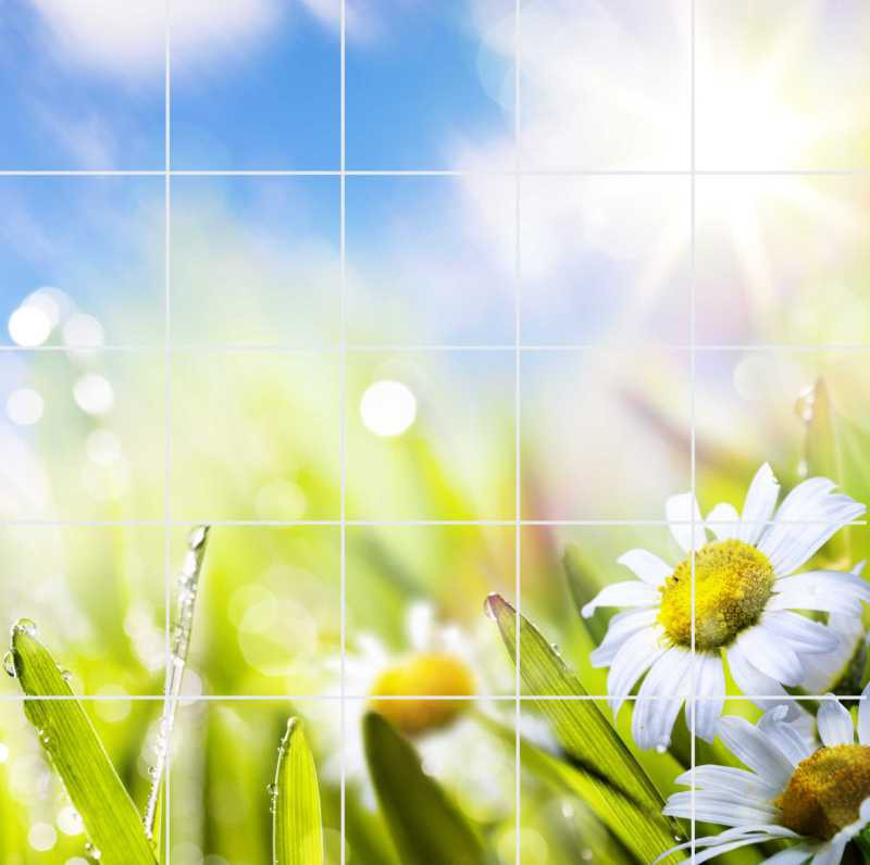 Fliesenbild Frühlingsblumen