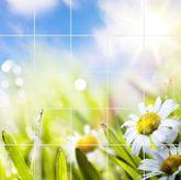 Fliesenbild Frühlingsblumen 001