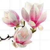 Fliesenbild Magnolie 001