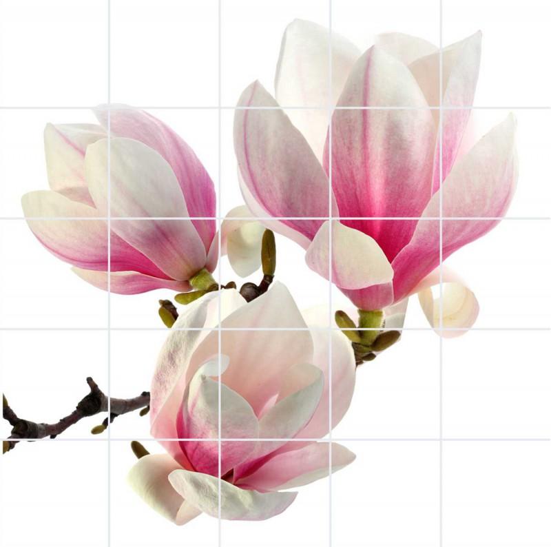 Fliesenbild Magnolie – Bild 1