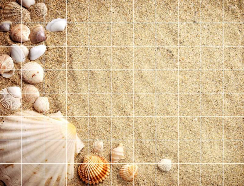 Fliesenbild Muscheln im Sand