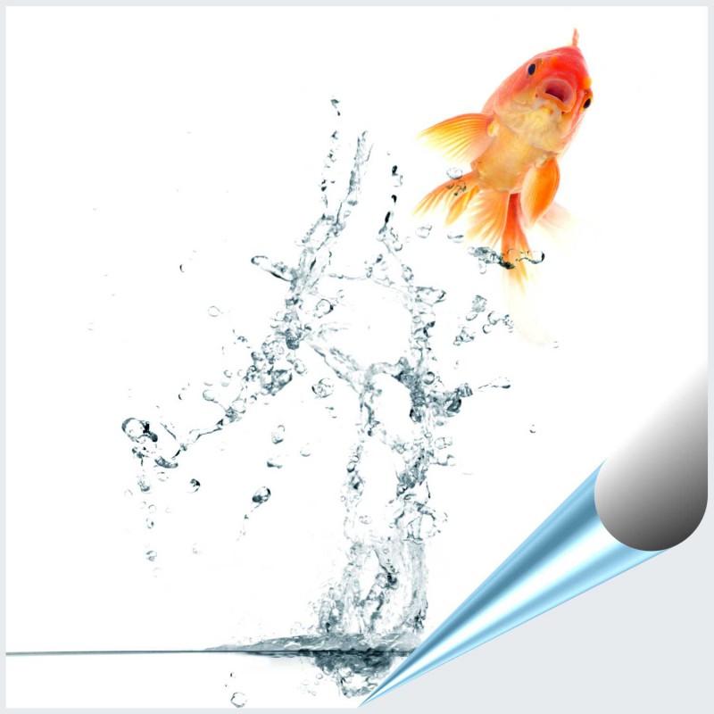 Fliesenaufkleber Motiv Springing Fish 10x10 cm – Bild 1