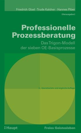 Professionelle Prozessberatung