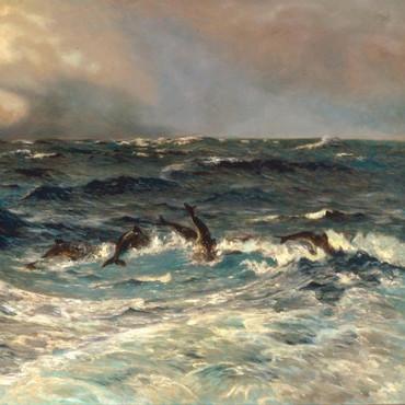 Fisch und Wind