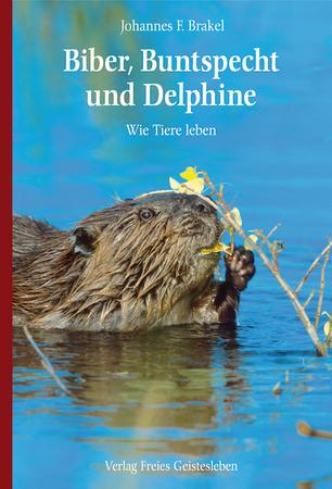Biber, Buntspecht und Delphine
