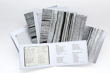 Kartenset Anthroposophie – Sprechen mit Verstorbenen