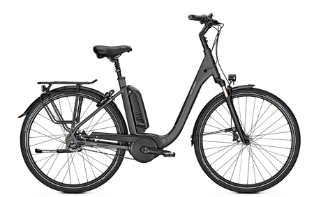 Raleigh Kingston Premium 28 CO L55 Bosch Motor E-Bike Shimano Comfort