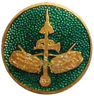Emailleabzeichen Spielmannszug grün – Bild 1
