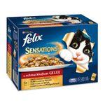 Felix Portionsbeutel Multipack Sensations Fleisch 12x100g 001