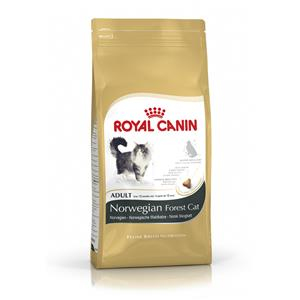 Royal Canin Feline Breed Nutrition Norwegian Forest Adult 10 kg – Bild 2