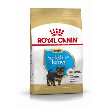 Royal Canin Breed Health Nutrition Yorkshire Terrier Junior 500 g – Bild 1