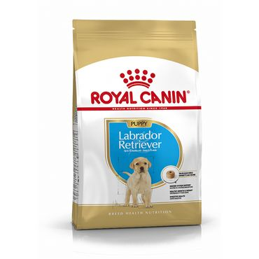 Royal Canin Breed Health Nutrition Labrador Retriever Junior 3 kg – Bild 1