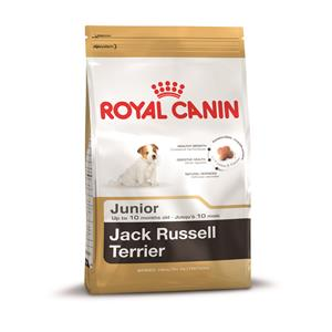 Royal Canin Breed Health Nutrition Jack Russell Junior 500 g – Bild 2