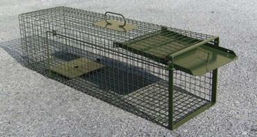 Drahtkastenfalle 100cm im Jagdartikelshop Bandemer kaufen