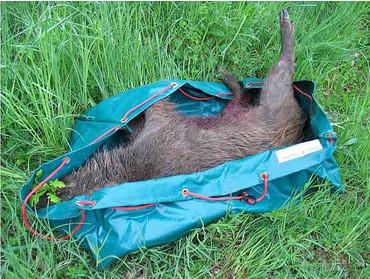 FLEXI faltbare Wildwanne im Jagdartikelshop Bandemer kaufen