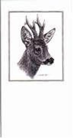 Glückwunschkarten schwarz/weiß im Jagdartikelshop Bandemer kaufen