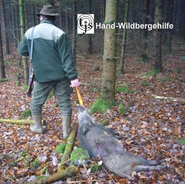 Hand-Wildbergehilfe XL im Jagdartikelshop Bandemer kaufen