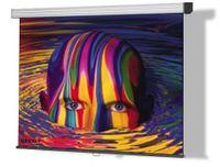 (1:1) Reflecta SilverLine Rollolleinwand Rückprojektion 200 x 210 cm