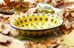 Soap dish, Tradition 20 - polish pottery - BSN 14948 Picture 1