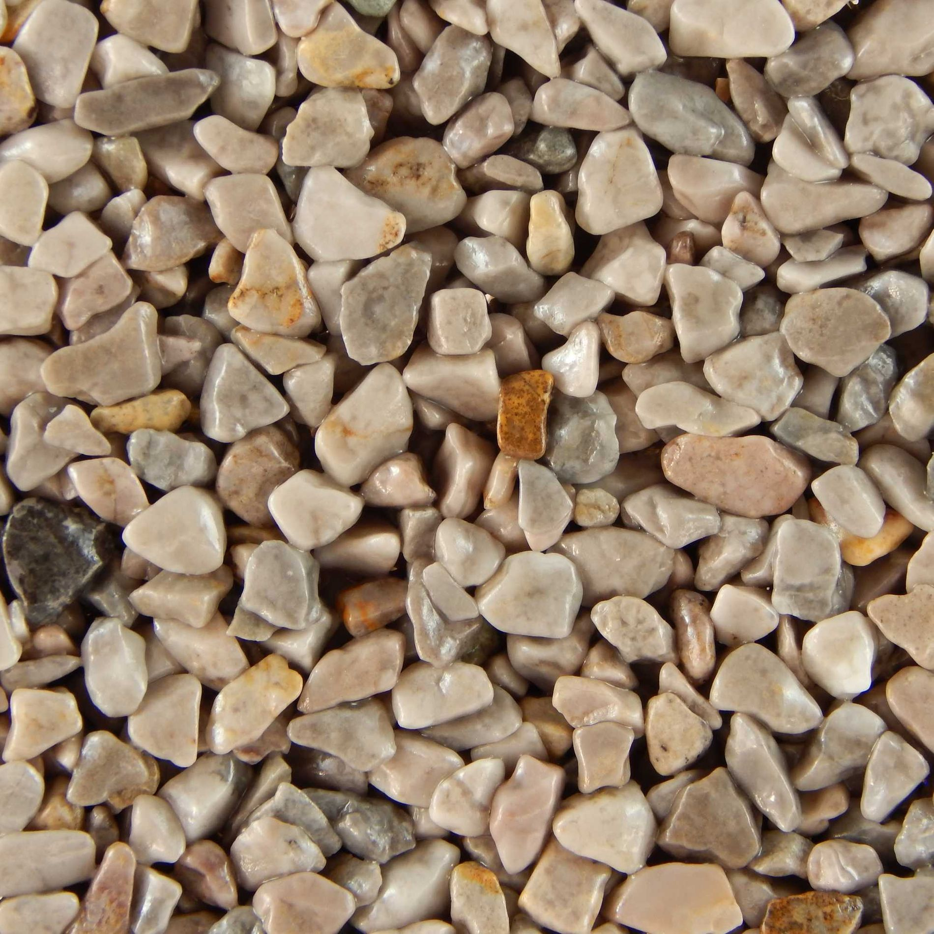 Terralith Marmor - Steinteppich WAND grigio (fein) für 1 qm