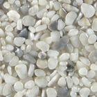 Terralith Marmor - Steinteppich WAND mix pisa (fein) für 1 qm 001