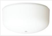 Westinghouse globe de rechange pour ventilateur de plafond Athena 78010
