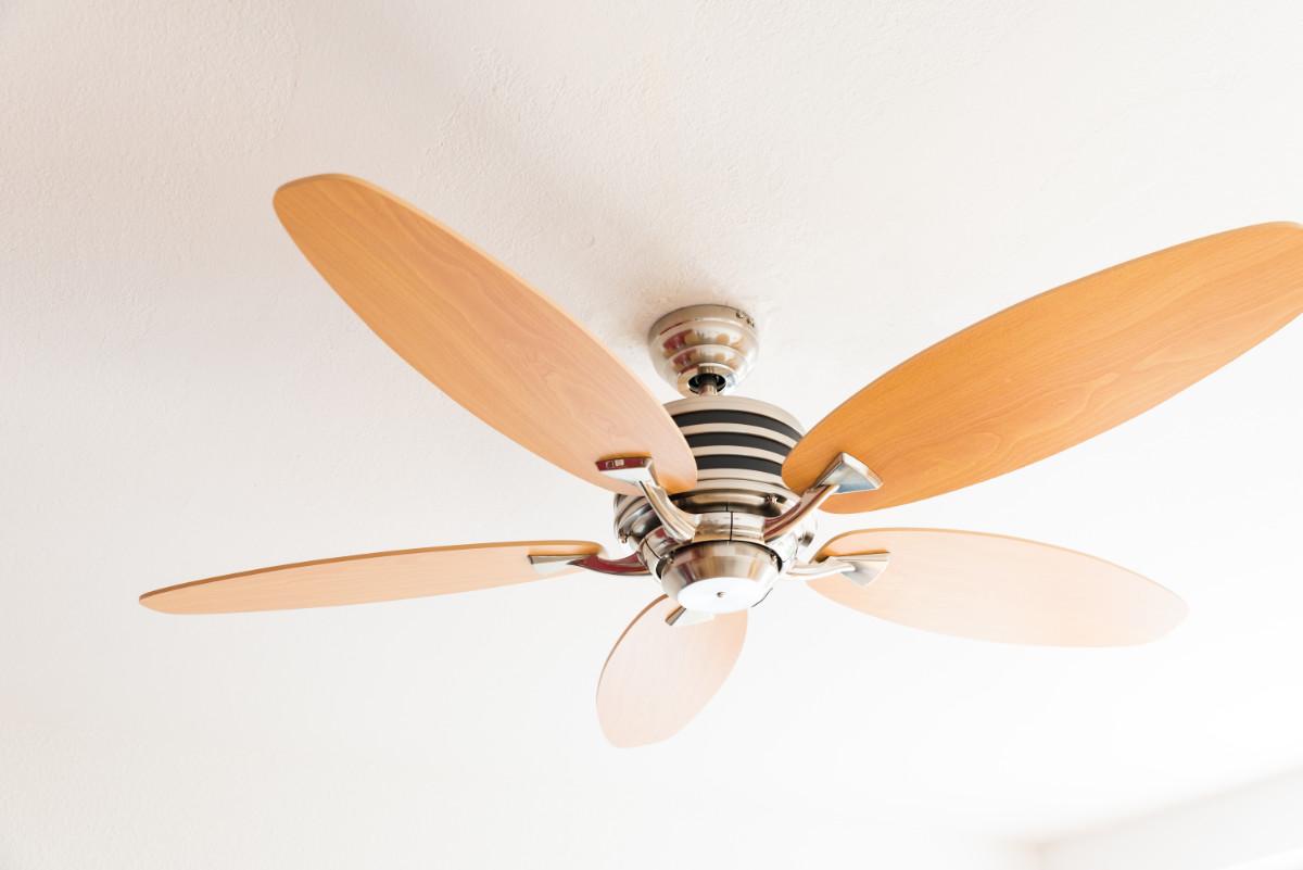ventilateur de plafond basse conso eco gamma h tre erable avec t l commande en diff rentes. Black Bedroom Furniture Sets. Home Design Ideas