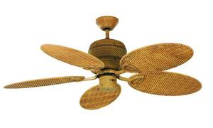 Ceiling Fan Queensland (BC 897)