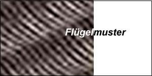 Weidenflügel HUNTER dunkelbraun antik – Bild 2