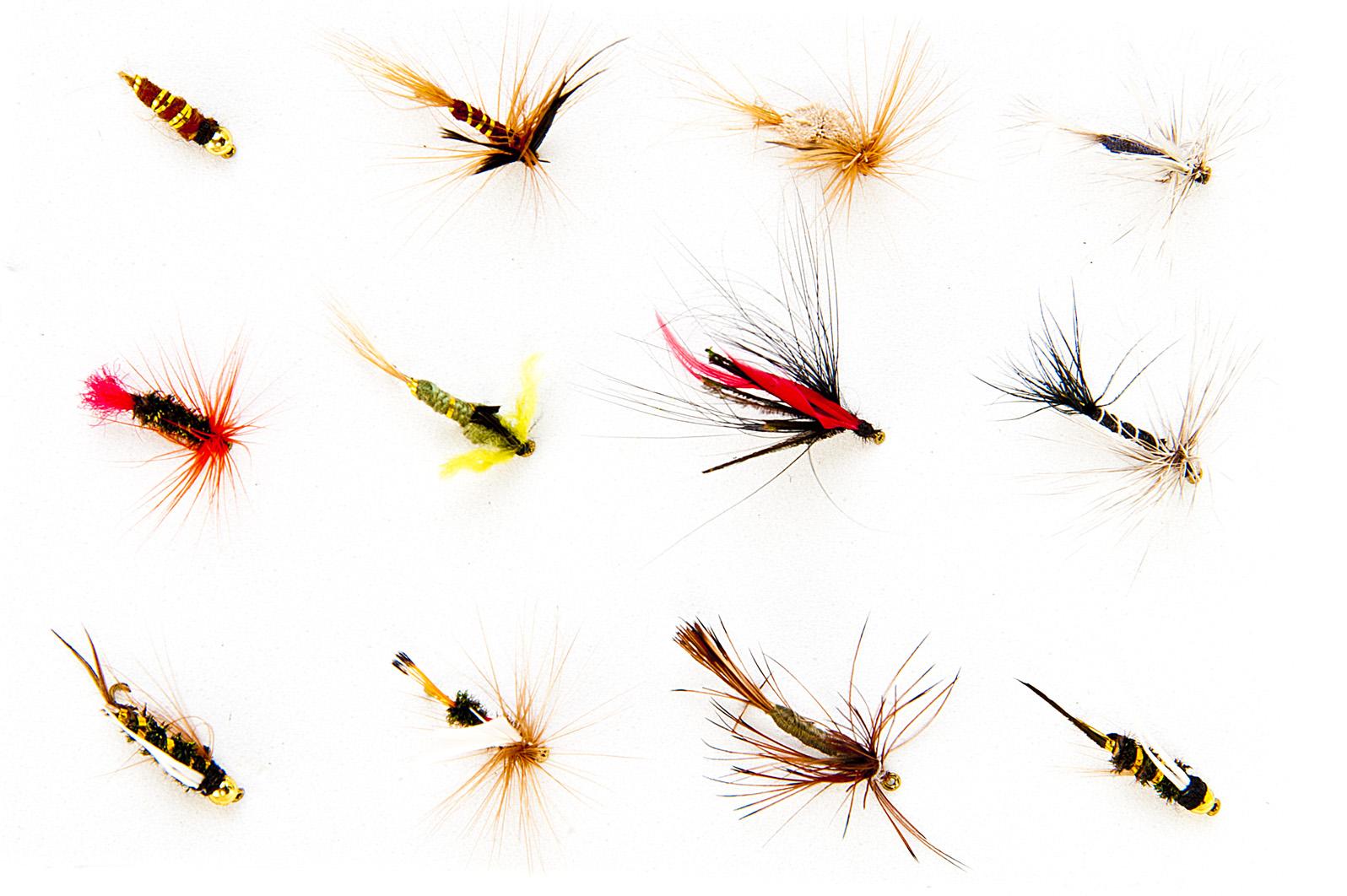 5 x Trockenfliegen Set Nassfliegen Fliegenfischen Fliegen Streamer Angelfliegen