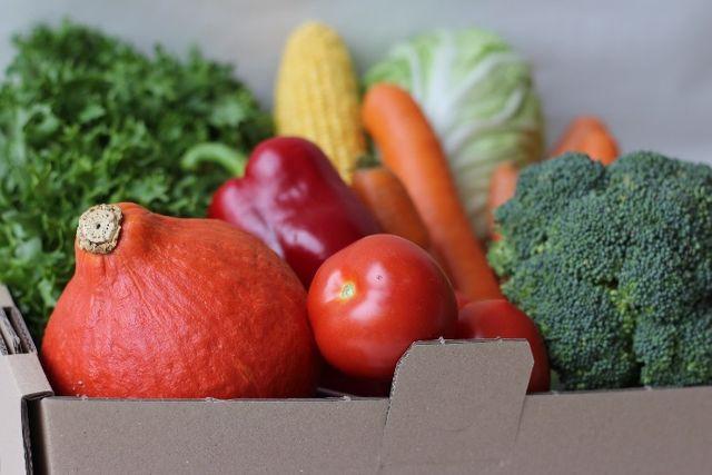 Bio Gemüsekiste (ca. 5 kg)