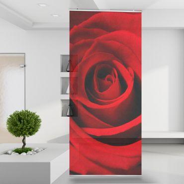 Raumteiler | Gardine Rote Rose - 120 x 250 cm – Bild 1