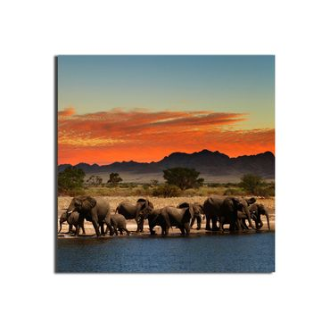 Leinwandbild Herd of Elephants – Bild 1