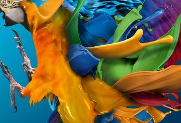 Vliestapete Parrot 372x254cm – Bild 3