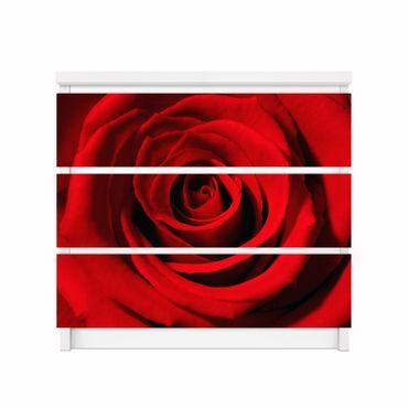 Möbelfolie Malm - Rose – Bild 2