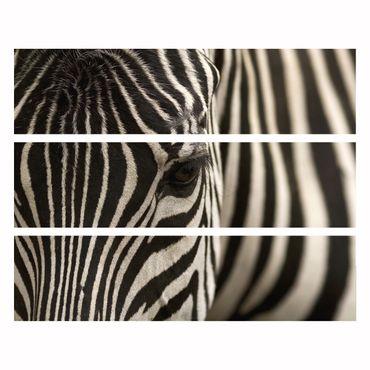 Möbelfolie IKEA Kommode - Selbstklebefolie - Design: Zebra – Bild 4