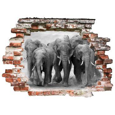 3D Wandtattoo Elefanten Familie