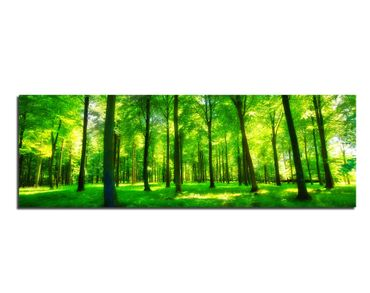 Leinwandbild Green Forest Lights  – Bild 1