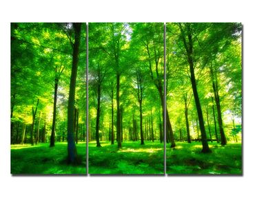 Leinwandbild Green Forest Lights Triptychon