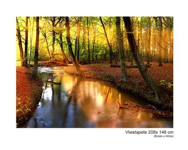 Fototapete Vlies Fairytale Forest – Bild 5