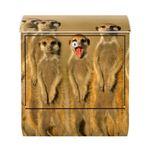 Design Briefkasten - Meerkat Family - mit Zeitungsfach