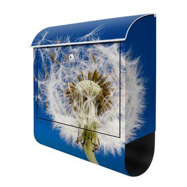 Design Briefkasten - Detailreiche Pusteblume - mit Zeitungsfach  – Bild 3