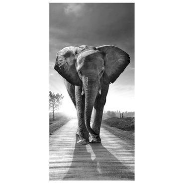 Raumteiler | Gardine Elefanten - Spaziergang Schwarz Weiss - 120 x 250 cm  – Bild 2