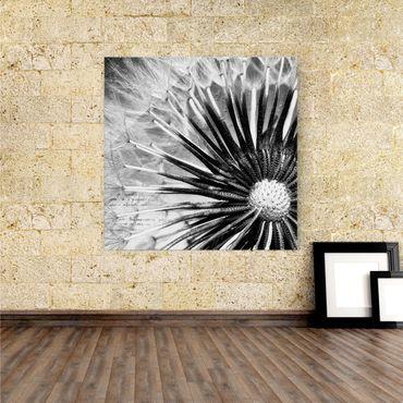Acrylbild Pusteblume II | schwarz weiß – Bild 1