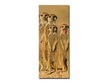 Glasbild Meerkat Family I