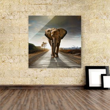 Glasbild Big Elephant on Street  – Bild 1