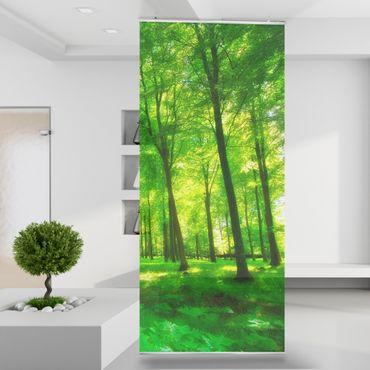 Raumteiler Green Forest Lights Wald Wiese Pflanzen See Fluss Wand Stoff Mauer Bild Zimmer Dekoration Modern XXL Bahn einteilig No.190